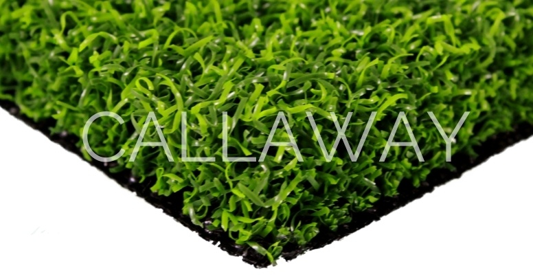 Close up of CallawayLawn Eagle Gold Turf (CLEP)
