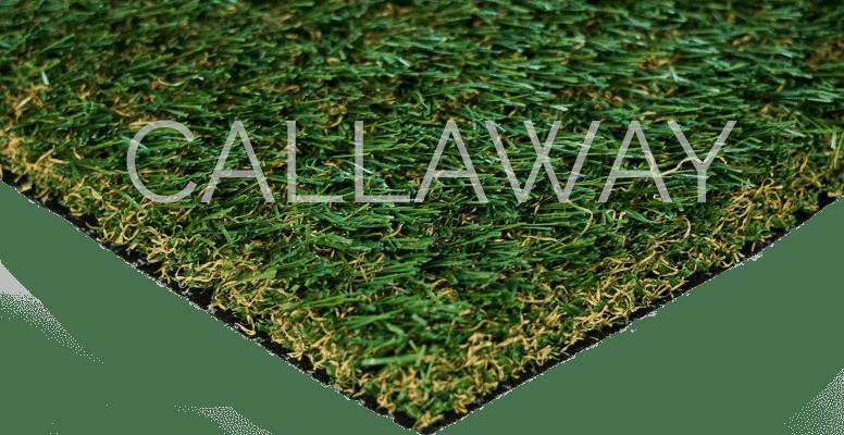 CallawayLawn Fescue Pro CLFP