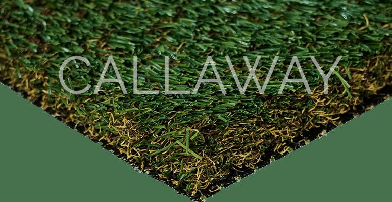 CallawayLawn Zoysia Elite CLZE